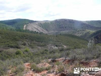 Senda Genaro - GR300 - Embalse de El Atazar - Patones de Abajo _ El Atazar; senderismo en sanabria
